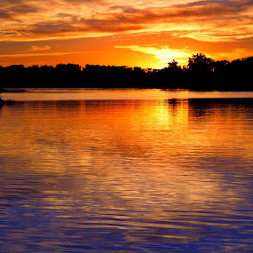 Orange & Blue Sunset by Ty Shults - Landscapes Waterscapes ( water, orange, reflection, watch, beautiful, horizon, lake, sun, blue, ripples, sunset, peace, trees, night, pond, evening,  )