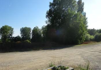 terrain à La Celle-Saint-Avant (37)