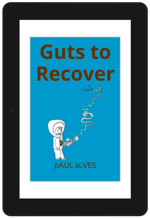 guts to recover ebook cover