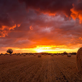 red sky at night by Tony Walker - Landscapes Sunsets & Sunrises ( cloud, hay, field, sunset, farm, landscape )
