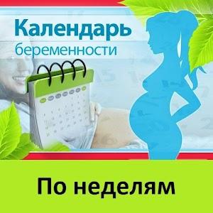 Календарь беременности .