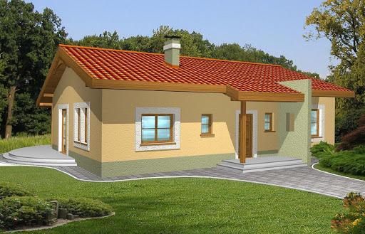 projekt Mniszek bez garażu