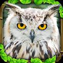 Owl Simulator icon