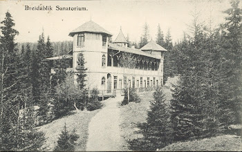 Photo: Breidablikk, Tonsåsen i 1905