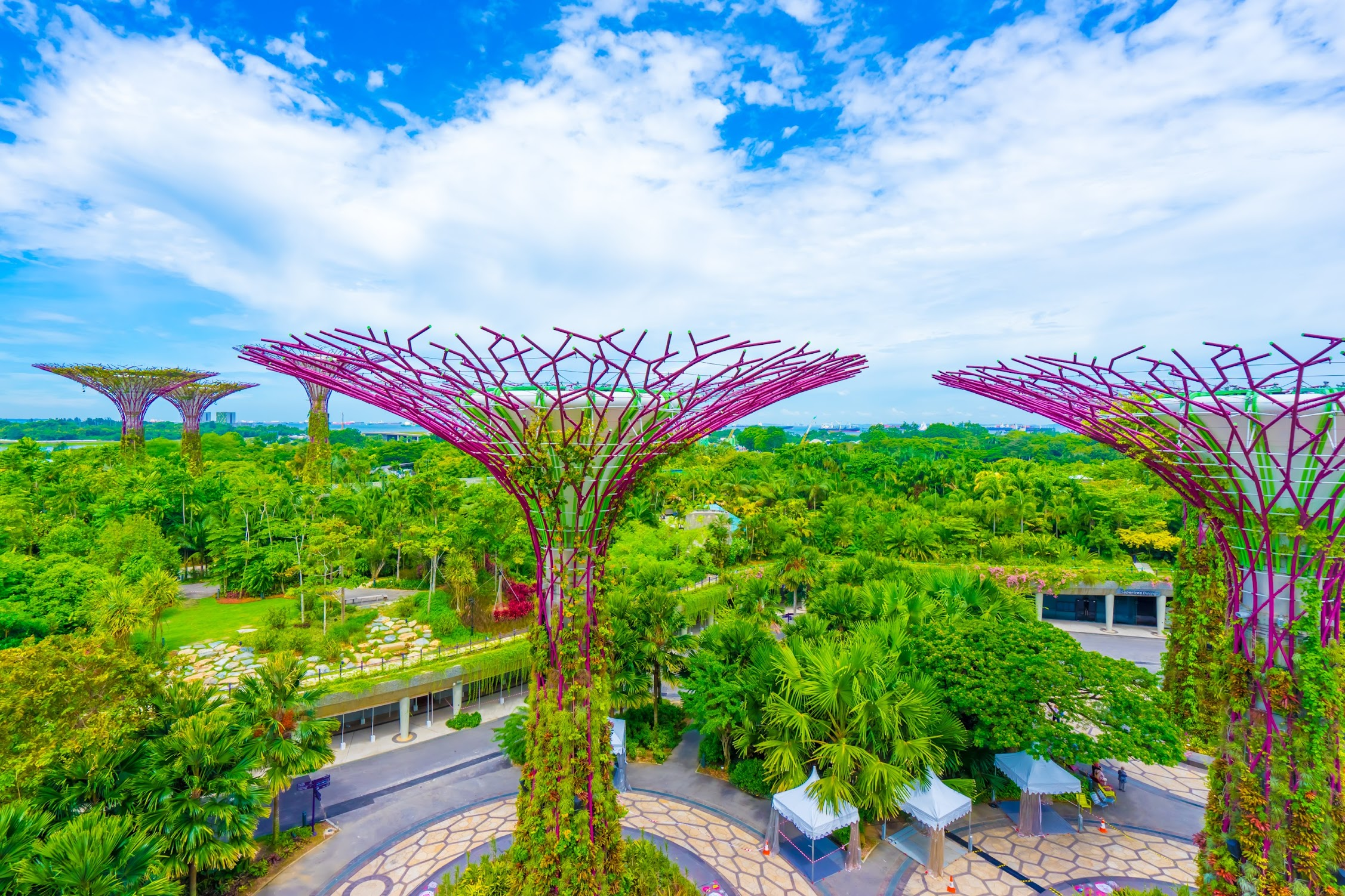 Gardens by the Bay OCBC Skyway1