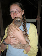 Photo: Then again, it's kind of hard to say no when someone is passing you a sloth to hold and it's grasping out toward you.
