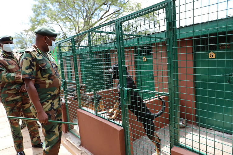 Chief Conservator of Forests Julius Kamau and KFS commandant Alex Lemarkoko inspect the canine unit.
