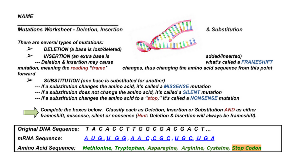 DNA Mutations Worksheet - Google Docs
