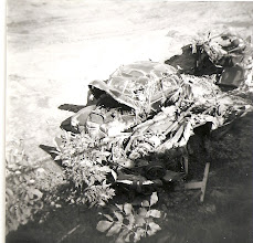 Photo: The remains of the Adams family car. Photo courtesy of Edward Adams Jr.