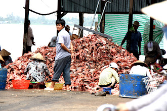 Photo: Year 2 Day 32 - Mound of Filleted Fish on the Riverside