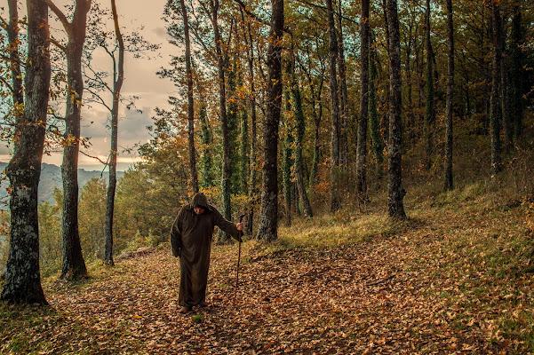 L'autunno avanza... di si