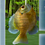 Fishing 3D file APK for Gaming PC/PS3/PS4 Smart TV