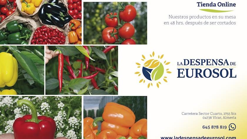 Tienda online La Despensa de Eurosol.