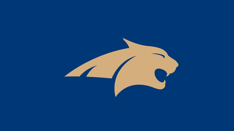 Watch Montana State Bobcats men's basketball live
