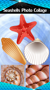 Seashells Photo Collage - náhled