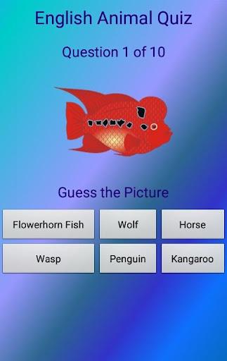 英語動物クイズ