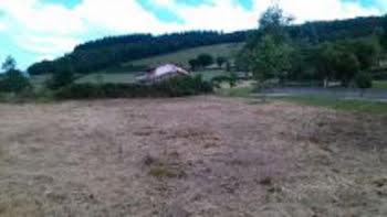 terrain à Propières (69)