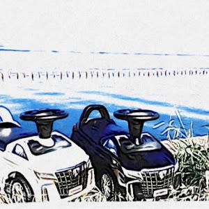 アルファード AGH30Wのカスタム事例画像 masayuki4220 関『輩』東さんの2020年08月22日15:19の投稿