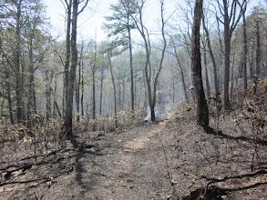 Photo: Bogan's Run Trail . . . smokin!