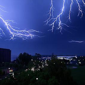 Fork Lightning over Toronto by Andy Barrow - Landscapes Weather ( fork lightning lightening storm toronto lake night )