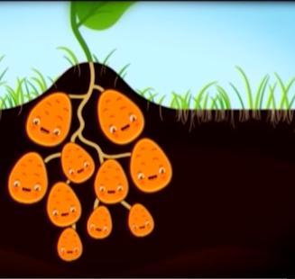 البطاطا - بدون انترنت (نشيد) - náhled