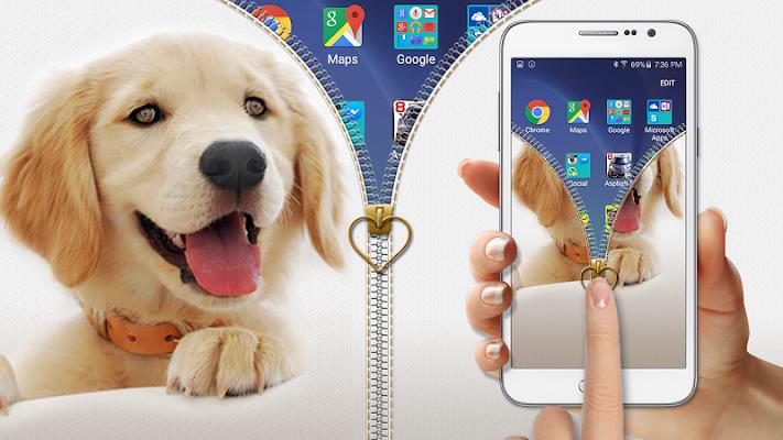 Puppy Zipper Lock - screenshot