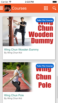Wing Chun Training Jeet KuneDo - screenshot