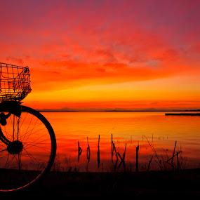 bike by Irfan Maulana - Landscapes Waterscapes