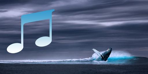 Whale song to sleep 1.0.5 screenshots 1