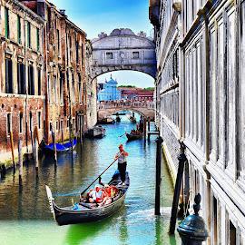 Venice Bridge of Sights  by Nelida Dot - Buildings & Architecture Bridges & Suspended Structures ( beautiful, venice, historic, famous, bridge, water, italy, gondola )