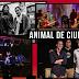 Animal de Ciudad (2007): proyecto musical cruceño