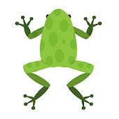 Jumping Frog with Math Trivia