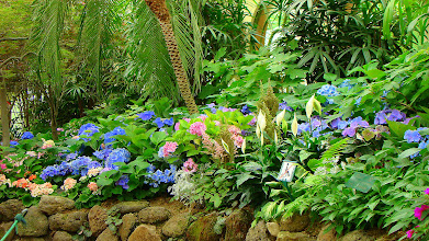 Photo: Greenhouse (Conservatory) Fizroy Gardens, Melbourne