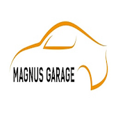 DetailKing Magnus Garage