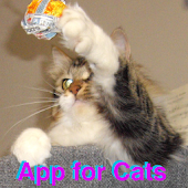 Toy App for Cats