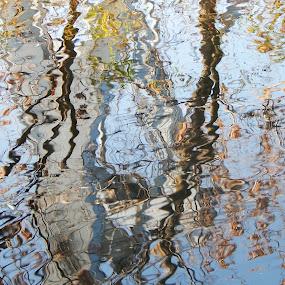Water reflection by Irena Čučković - Nature Up Close Water