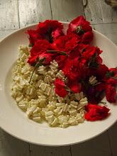 Photo: Elements pour déco florale
