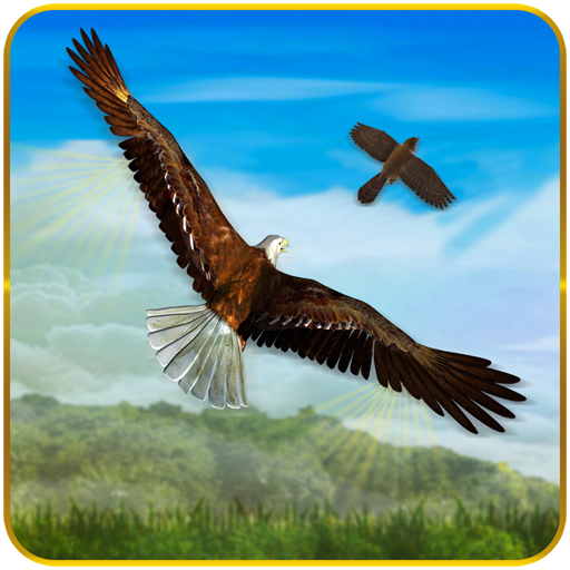Bird Chase Mania: Eagle Hunt Endless Flying 3D