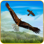 Bird Chase Mania: Eagle Hunt Endless Flying 3D Android APK Download Free By Interactive Games