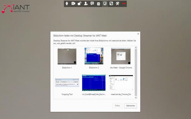 Desktop Streamer for IANT Meet