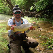 """Photo: Just wanted to thank you for providing honest, accurate river updates. I gave you guys a call a few weeks back and you told me there was no fly too big for the Mad. I've made several trips over the past few weeks from my Cleveland home, caught several 17-18"""" fish, but was still looking for bigger. I up'd the size of the fly and the browns followed suit. Thanks!"""