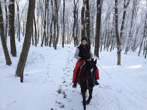 Riding horses in the Snow in Romania | Krys Kolumbus Travel