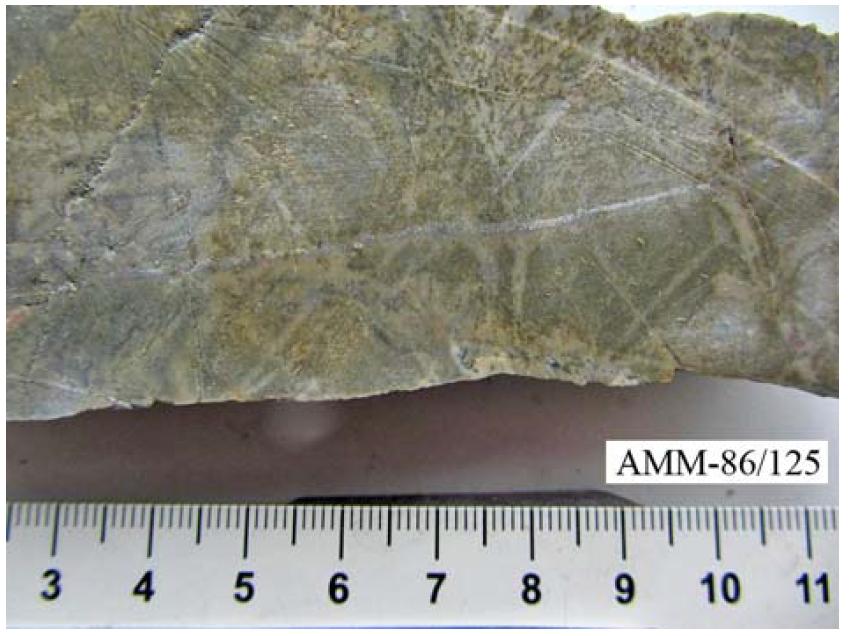 Калишпатизированный и карбонатизированный риолит
