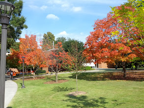 Photo: Fall on campus