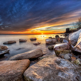 Morning Geese by Jamie Link - Landscapes Waterscapes ( framed, link, jamie, drama, landscape, float, photography, sun, pics, sky, photographer, dramatic, fine, rocks, clouds, water, jamie link photography, grass, camera, art, beautiful, lake, photo, print, photos, bird, red, blue, sunset, trees, sunrise, scenery, geese, river, goose )