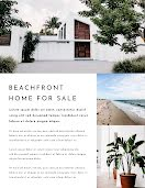 Beachfront Sale - Real Estate Flyer item