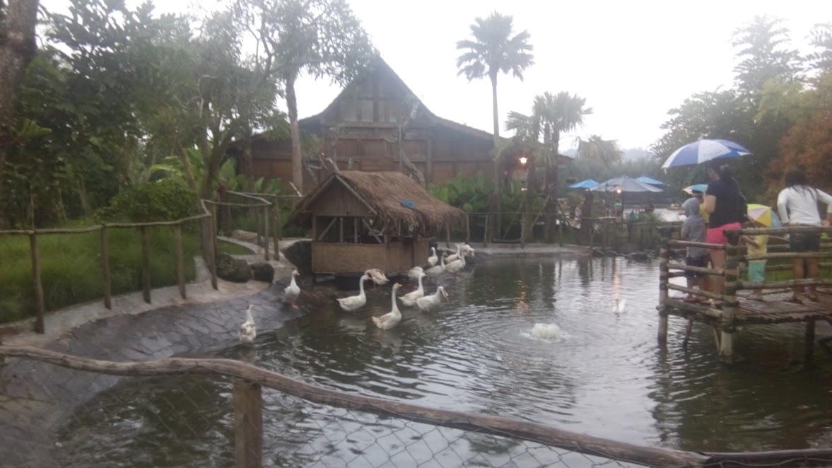 Kolam bebek di Floating Market Lembang