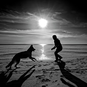 Lost love by Joseph Balson - Black & White Portraits & People ( sunsrise, black and white, shadow, beach, dog, man,  )