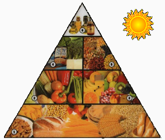 Piramide de alimentacion vegana
