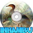 Canto do Inhambu Chintã icon
